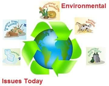 Environmental problem and solution essay